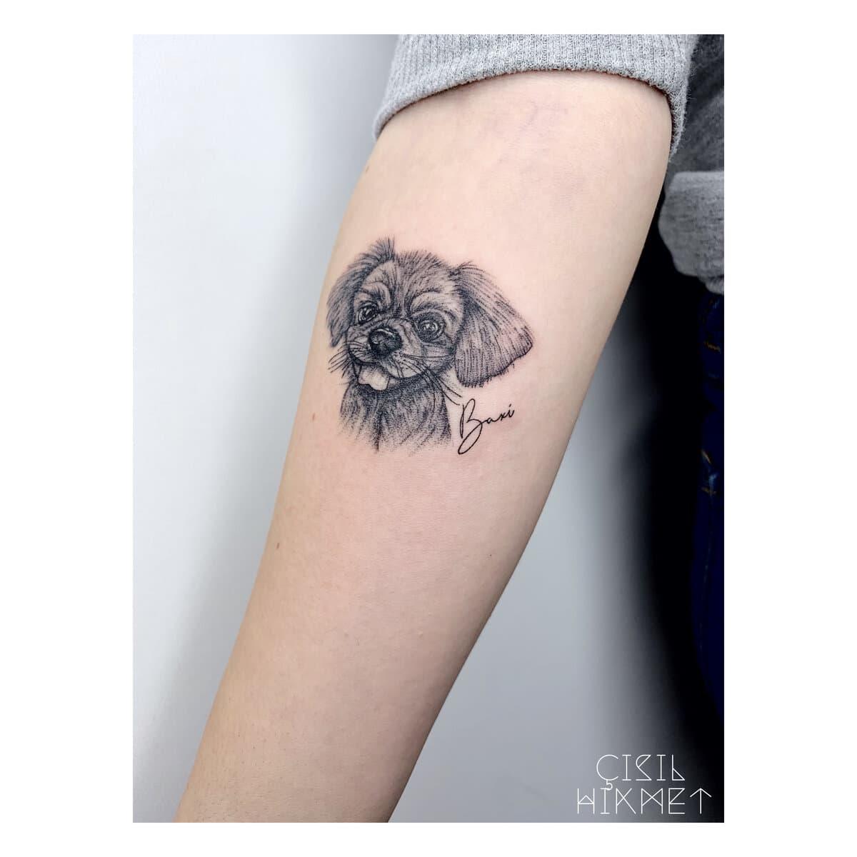 çisil-hikmet-tattoo-artist-portrait-dog