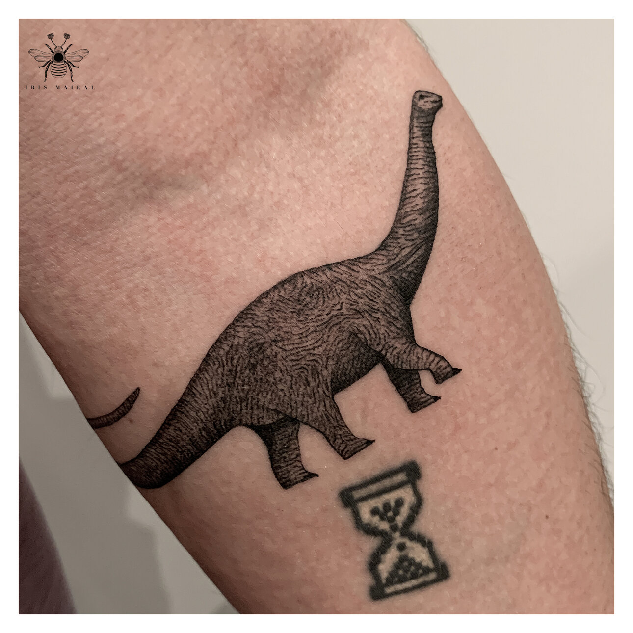 iris-mairal-tattoo-artist-dinosaur-blackwork