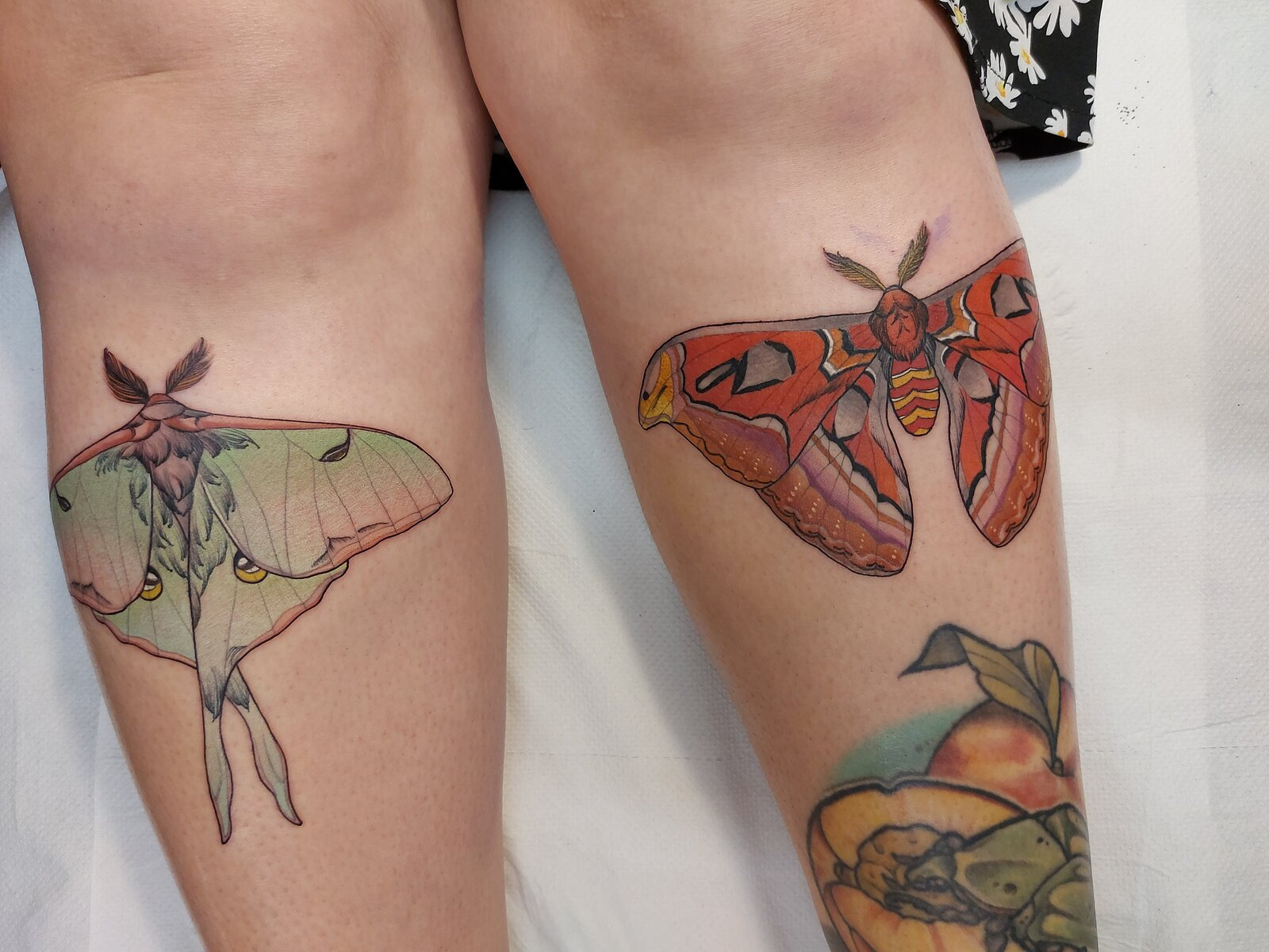 lucy-o-connell-tattoo-artist-butterfly-leg