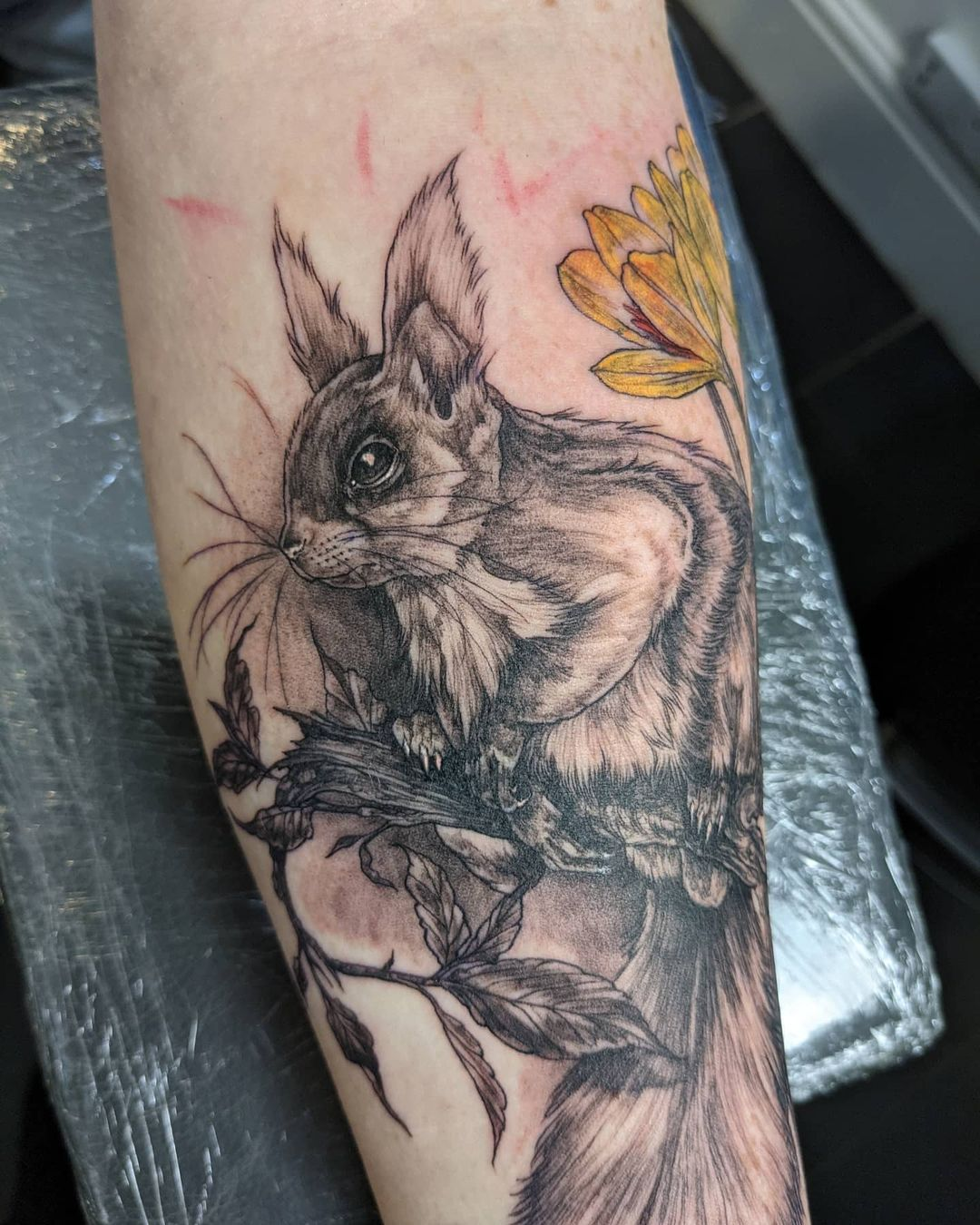 ali baugh cardiff tattoo squirrel realistic